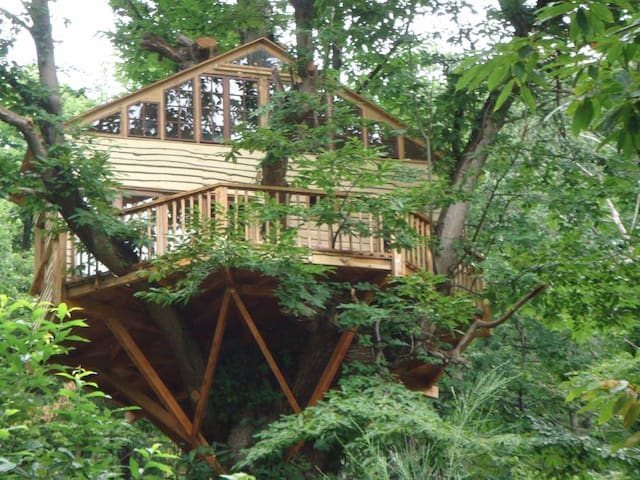 Treehouse, fully equipped  - Saint-Laurent-de-Cerdans - Appartement