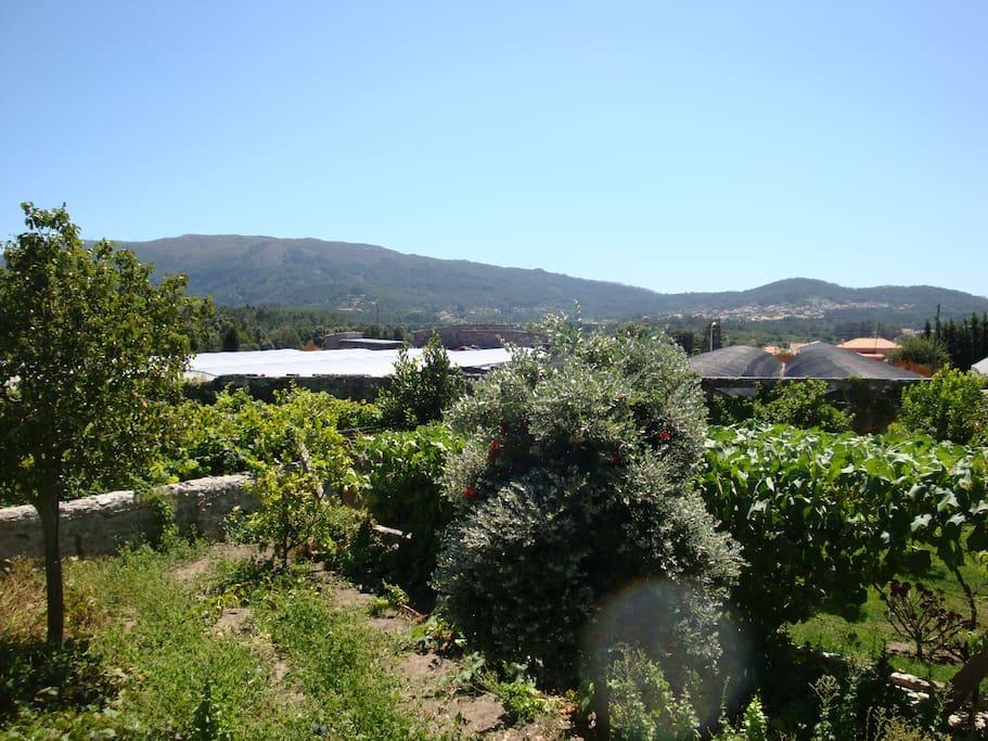 Charming accomodation pool garden houses for rent in - Viana do castelo portugal ...
