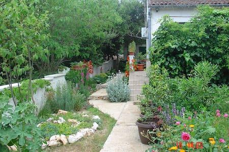Zadar - Silba, cosy house