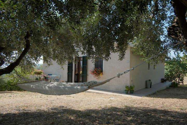 Casa in bella campagna marchigiana  - Osimo - Villa