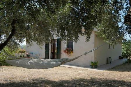Casa in bella campagna marchigiana  - Osimo