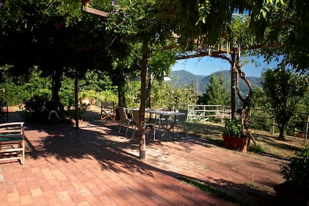 Villa Camp - Lucca