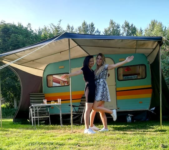 Retro caravan in natuurtuin