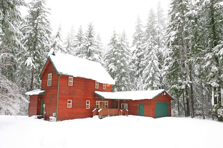 Alpine Adventure Lodge 747 - Packwood - Villa