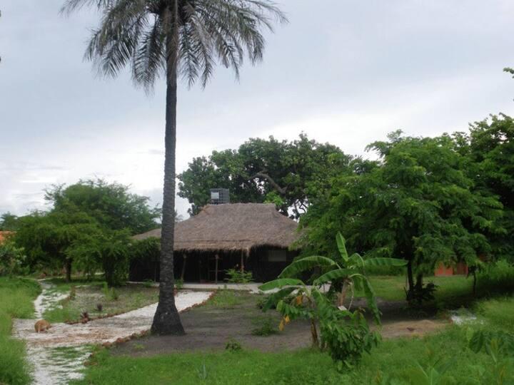 Casa ecológica en plena naturaleza