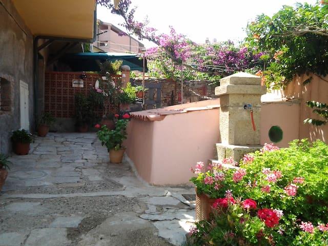 strada di accesso, vista del giardinetto con buganvillea