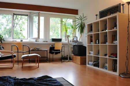 1 Bedroom Apt. in Fullinsdorf, BL