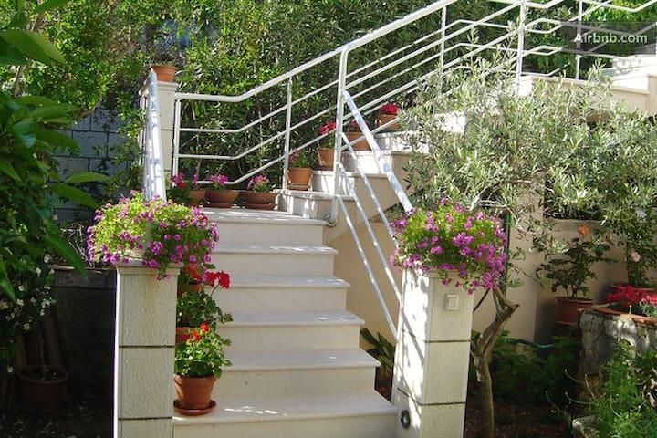 Floral Magic of Dubrovnik/parking