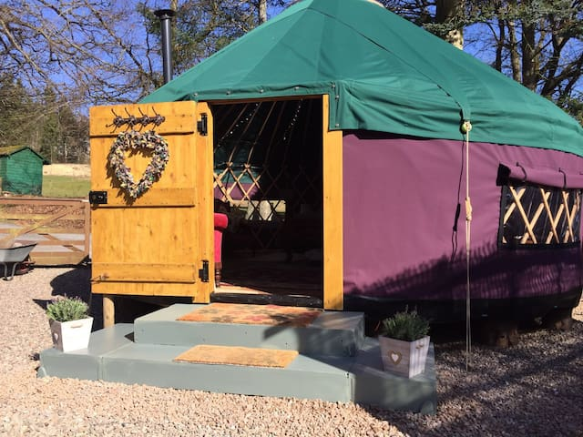 The Dragonfly Yurt - Pitlochry - 蒙古包