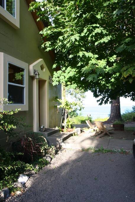 Relax under the Broad-leaf Maple while viewing the Salish Sea!