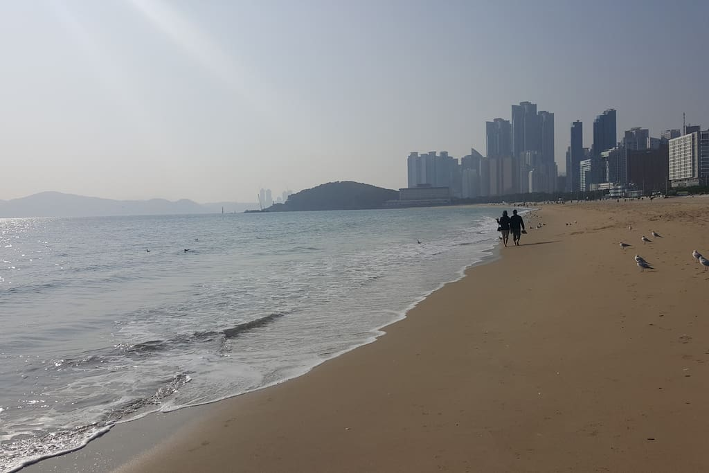 Welcome to haeundae, the most beautiful beach in Korea! Walk & Enjoy this moment♡