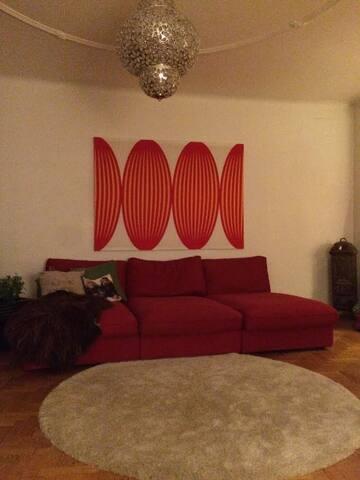 En central vacker vintage våning - Helsingborg - Lägenhet