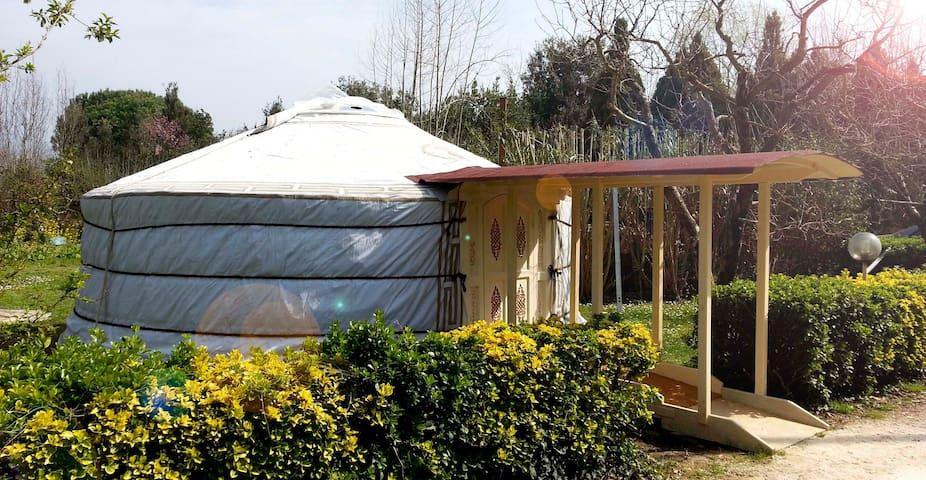 Yurta Originale Mongola nella Natura Versiliese - Pietrasanta - Yurt