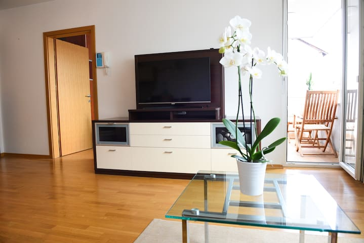 Central spacious apartment next to the city park - Frankopanska  - Wohnung