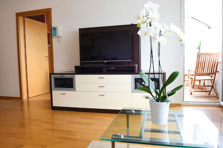 Central spacious apartment next to the city park