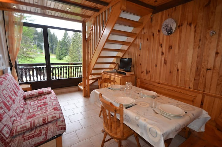 Apartment on the slopes of Les Chavannes