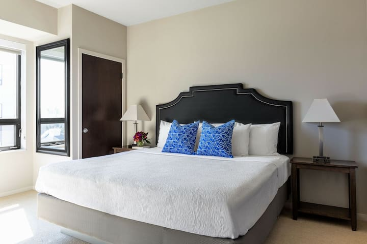 Dazzling Stay Alfred at The Paxon