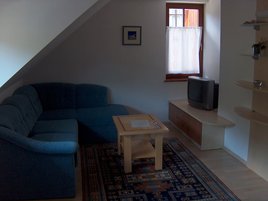 Living room (sofa with bed)
