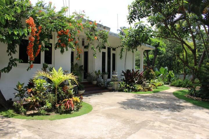 House with a garden.