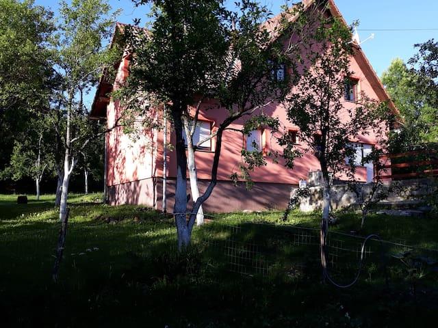 Apartament Biljevina