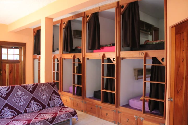 Pod 7: A Piece of Ground Hostel, Eatery, & Bar - Punta Gorda - Altres