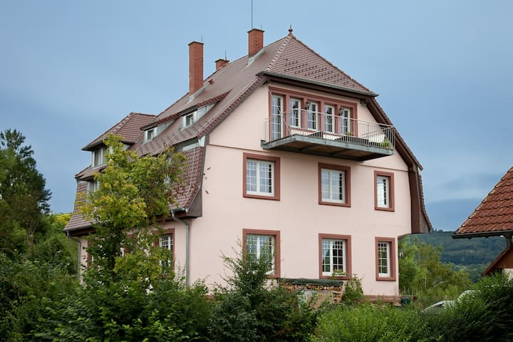 Lodge in the old rectory - Herbolzheim - Appartement
