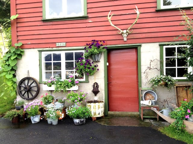 Charming House / Heart of Norway - Stavanger - Huis