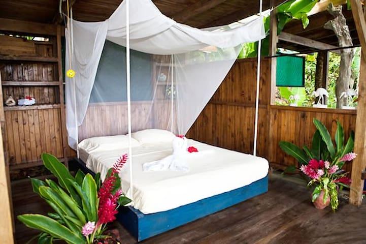 "OSA Rainforest Honeymoon ""Sweet"" - Carate - Bed & Breakfast"