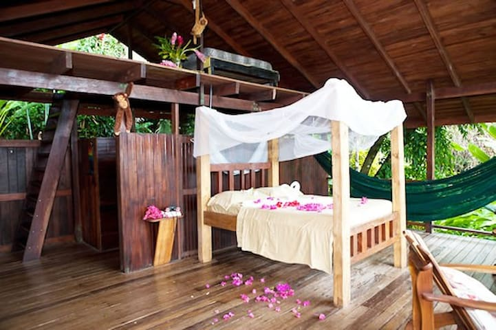 Monkey House OSA Open Air Cabana - Carate - Bed & Breakfast