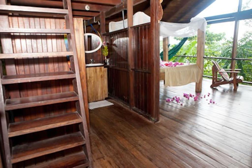 Stairs to Sleeping Loft, Monkey House.