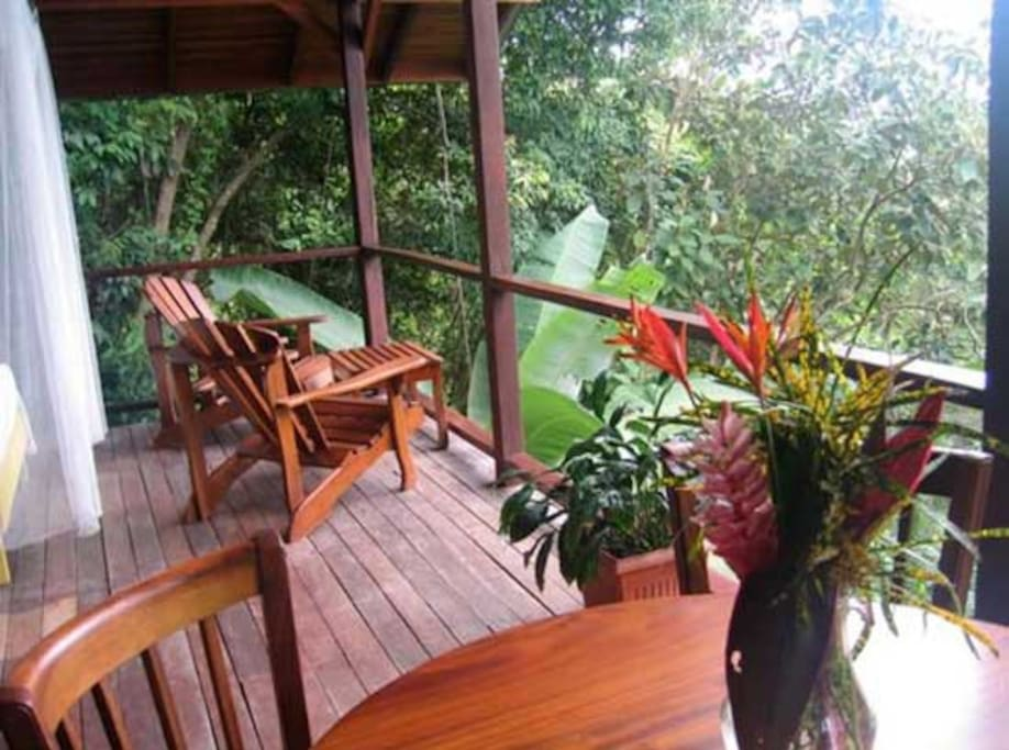 Welcome to the jungle!  This room overlooks rainforest & Carate Beach.
