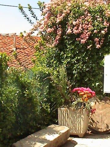 la casa nelle Langhe del Barolo  - Belvedere Langhe - House