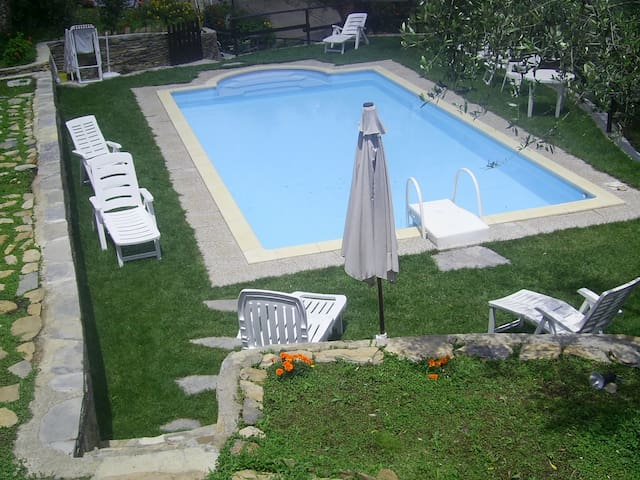 house betwheen olivaies, pool,relax - Lecchiore