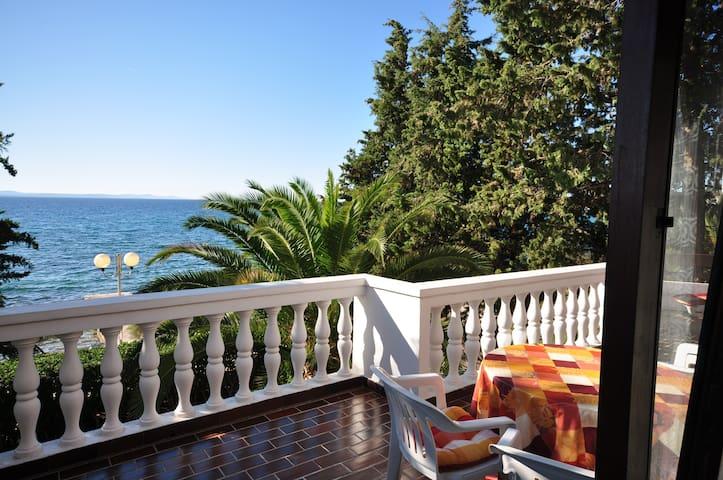 Apartment Vesna directly at the sea - Zadar - Lägenhet