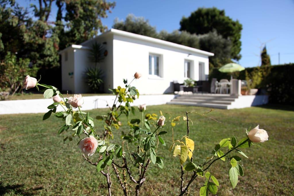 Maison nice terrasse jardin clim maisons louer nice provence alpes c te d 39 azur france - Terrasse jardin municipal nice ...