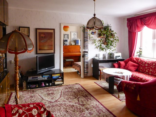 2-bedroom flat (walking distance from everything)