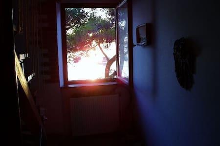 Bioni fazana,10m od mora - Appartamento
