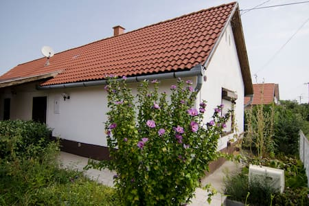 House with big garden & fire place - Buzsák - Casa