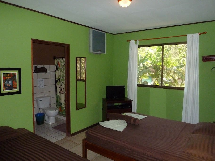 Cozy B B Micro Brewery Dido Room Bed Breakfasts For Rent In Montezuma Puntarenas Costa Rica