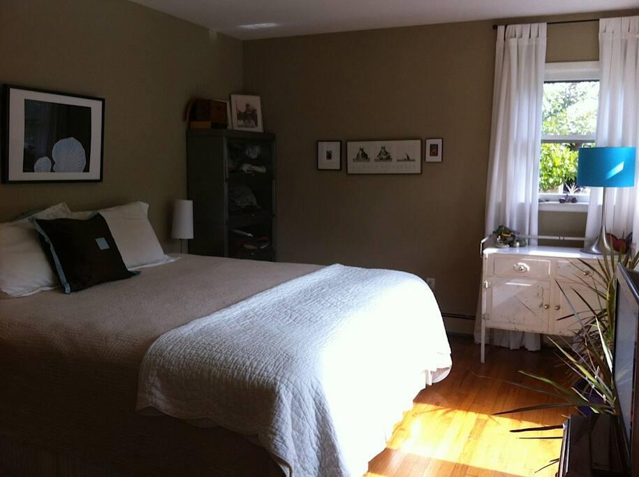 king bed master bedroom, french doors to back deck, half bath, tv