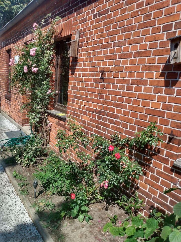 Wohnung in Langwedel bei Bremen