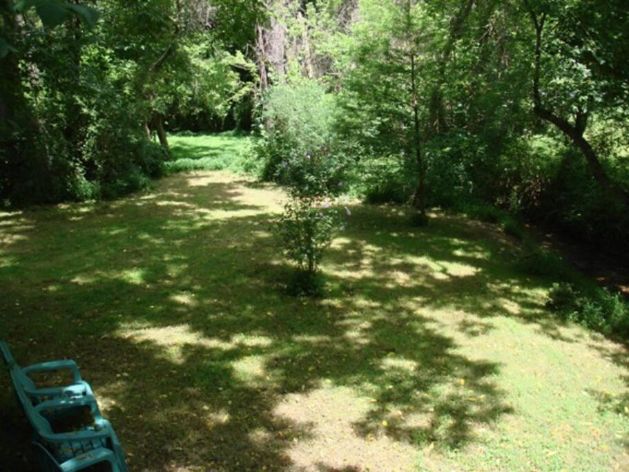 Beautiful, quiet backyard