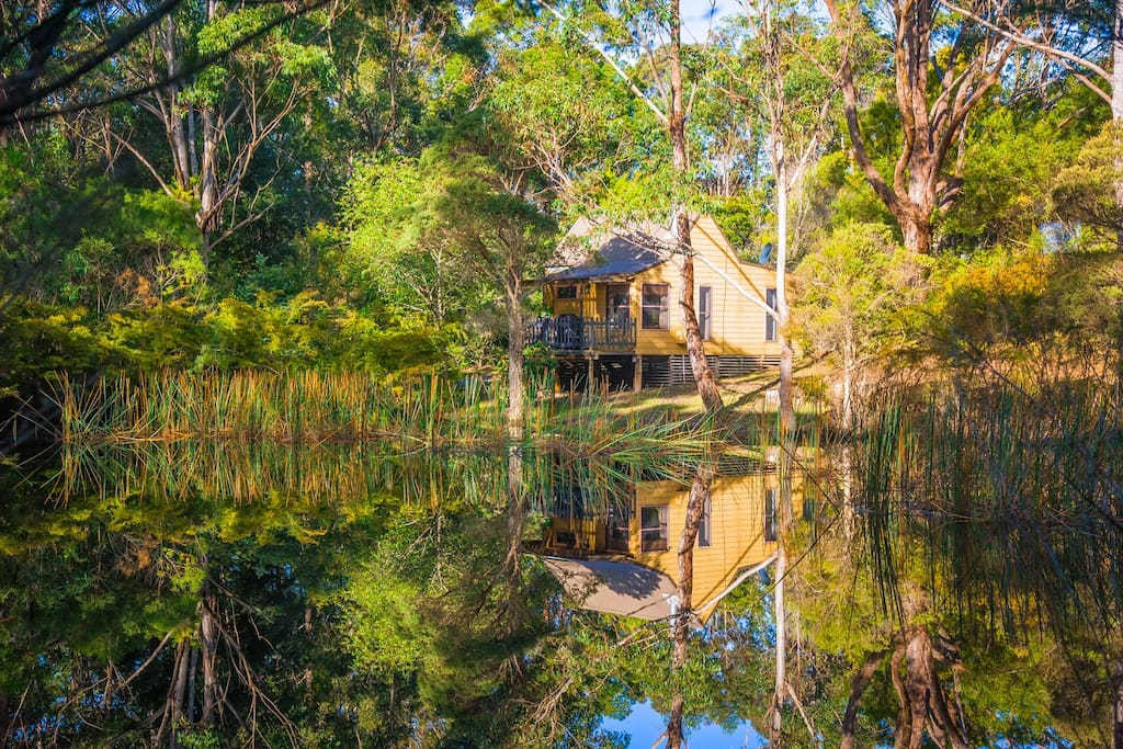 Billabong cottage on 25 acres cottage in affitto a for Piani casa del sud del cottage