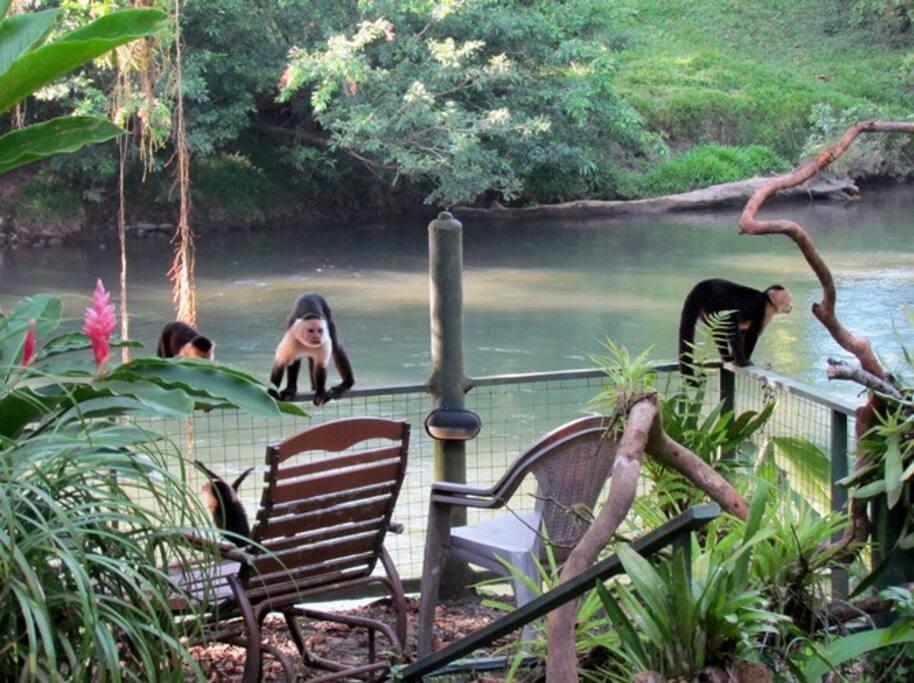 lekker ontspannen aan de rivier