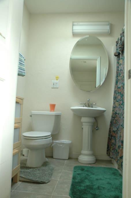 Skylighted room, own bath/entrance