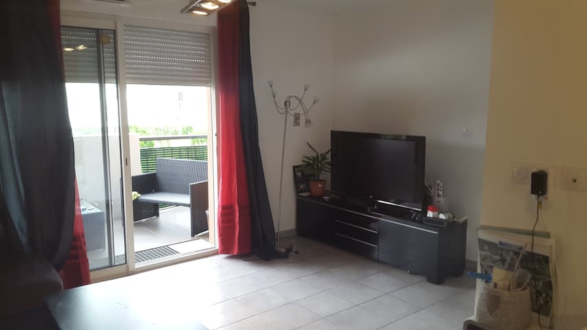 Appartement Euro 2016 - Saint Etienne - Saint-Priest-en-Jarez - Apartmen