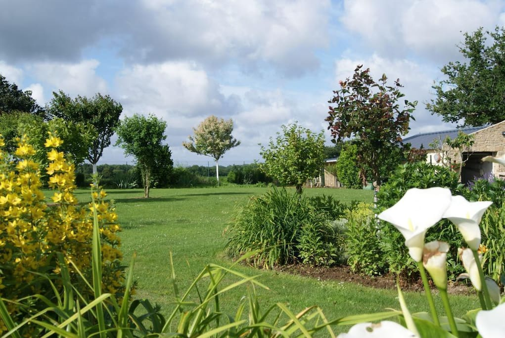 Jardin fleuri pelouse pour se détendre