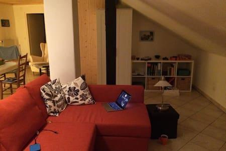 Joli appartement mansardé - Delémont - Huoneisto