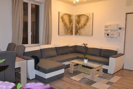 appartement F2 secteur strasbourg - Mommenheim - Leilighet