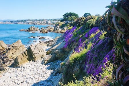 Ocean View Lovers Point Mermaid Cottage. - 太平洋叢林(Pacific Grove)